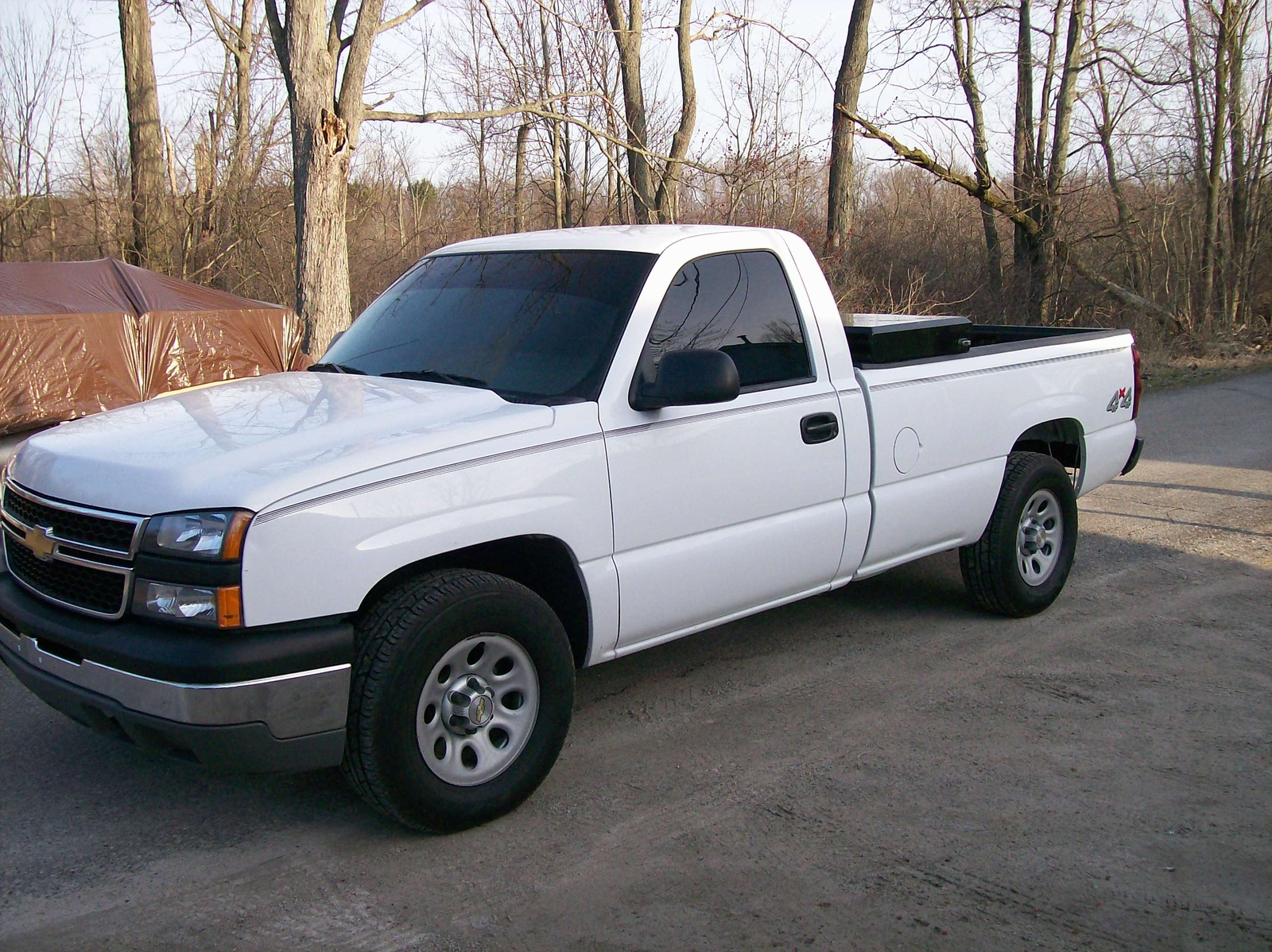 2006 chevrolet silverado 1500 work truck 4wd picture exterior. Cars Review. Best American Auto & Cars Review