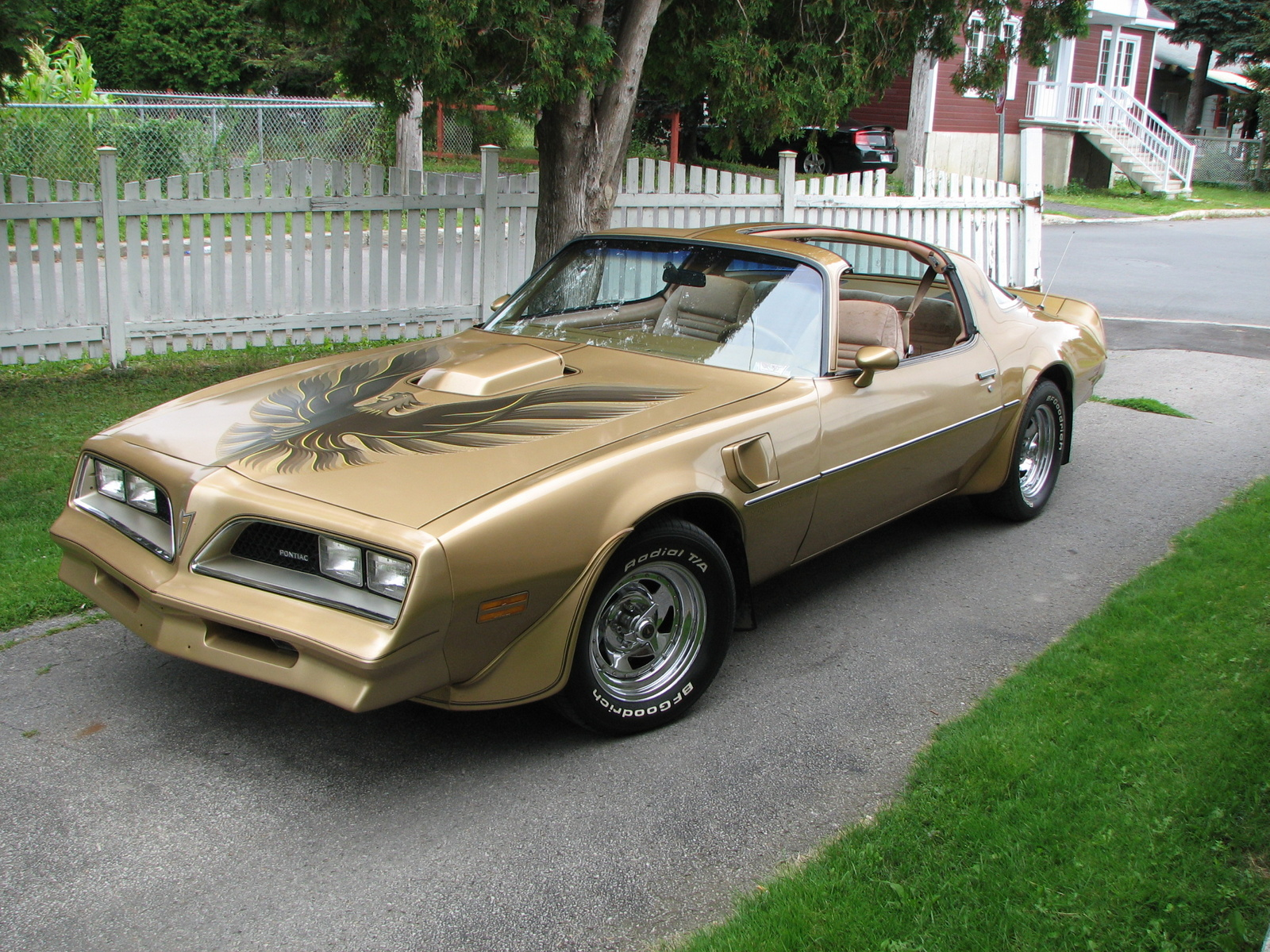 Pontiac Trans Am Related Images Start 0 Weili Automotive
