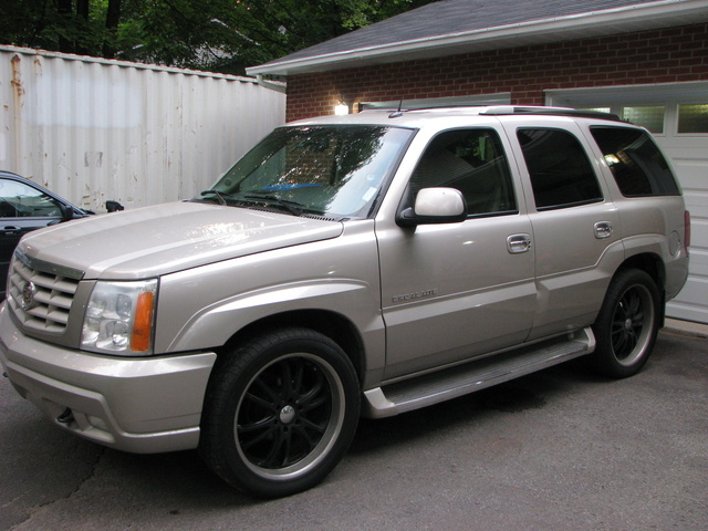 Picture of 2002 Cadillac Escalade 4WD, exterior, gallery_worthy