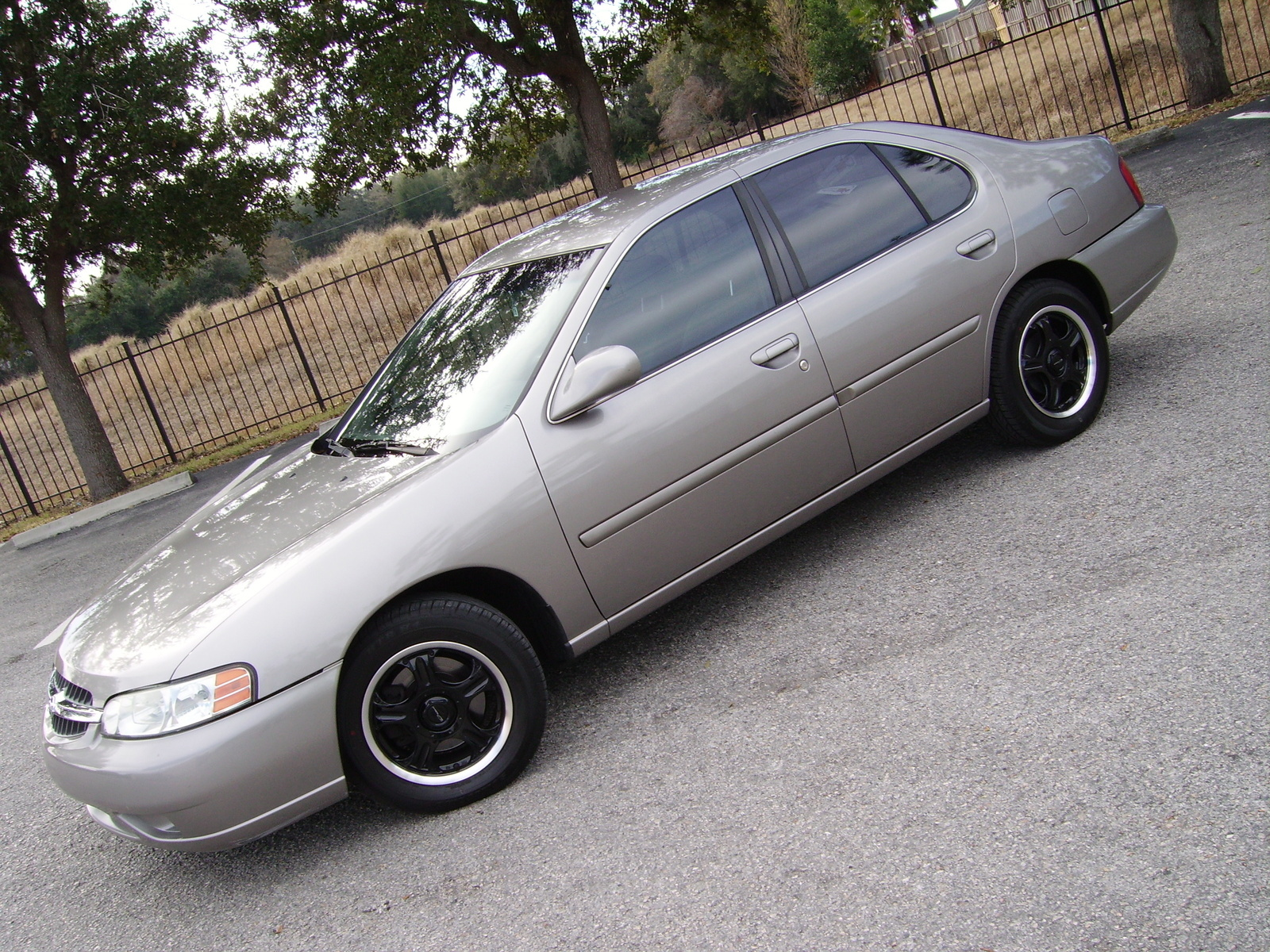Picture of 2000 Nissan Altima GXE, exterior, gallery_worthy