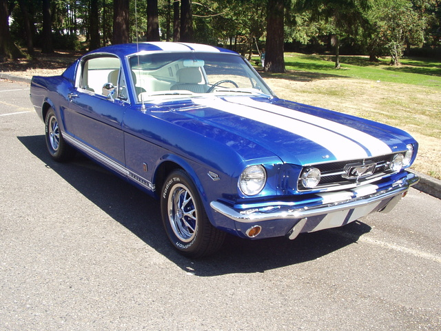 Picture of 1965 Ford Mustang Standard Fastback, exterior, gallery_worthy