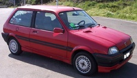 1991 Rover Metro Overview