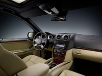 2010 Mercedes-Benz M-Class, Interior View, manufacturer, interior