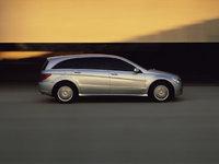 2010 Mercedes-Benz R-Class, Right Side View, exterior, manufacturer