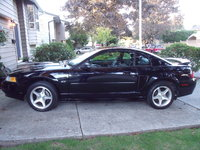 Picture of 2000 Ford Mustang GT, exterior