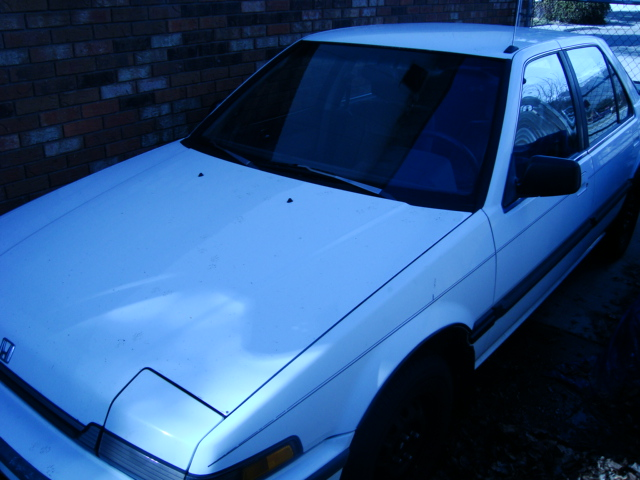 1989 Honda Accord picture
