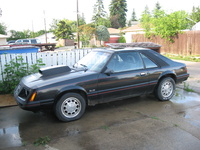 1984 Ford Mustang Picture Gallery