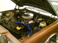 1980 Chevrolet Monte Carlo picture, engine