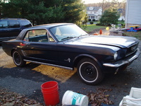 1964 Ford Mustang Picture Gallery