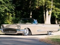 1958 Ford Thunderbird Picture Gallery