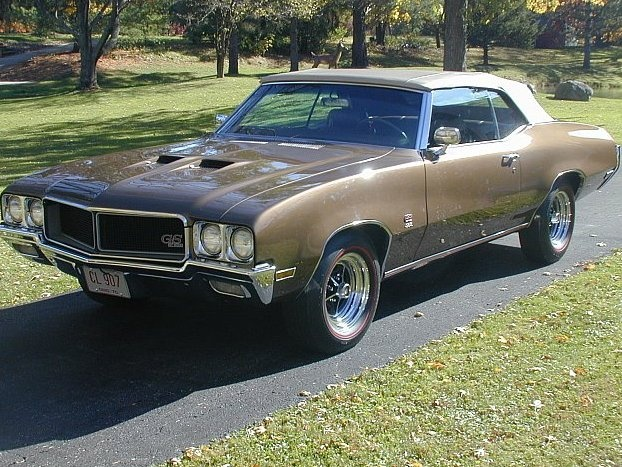 Picture of 1970 Buick Skylark