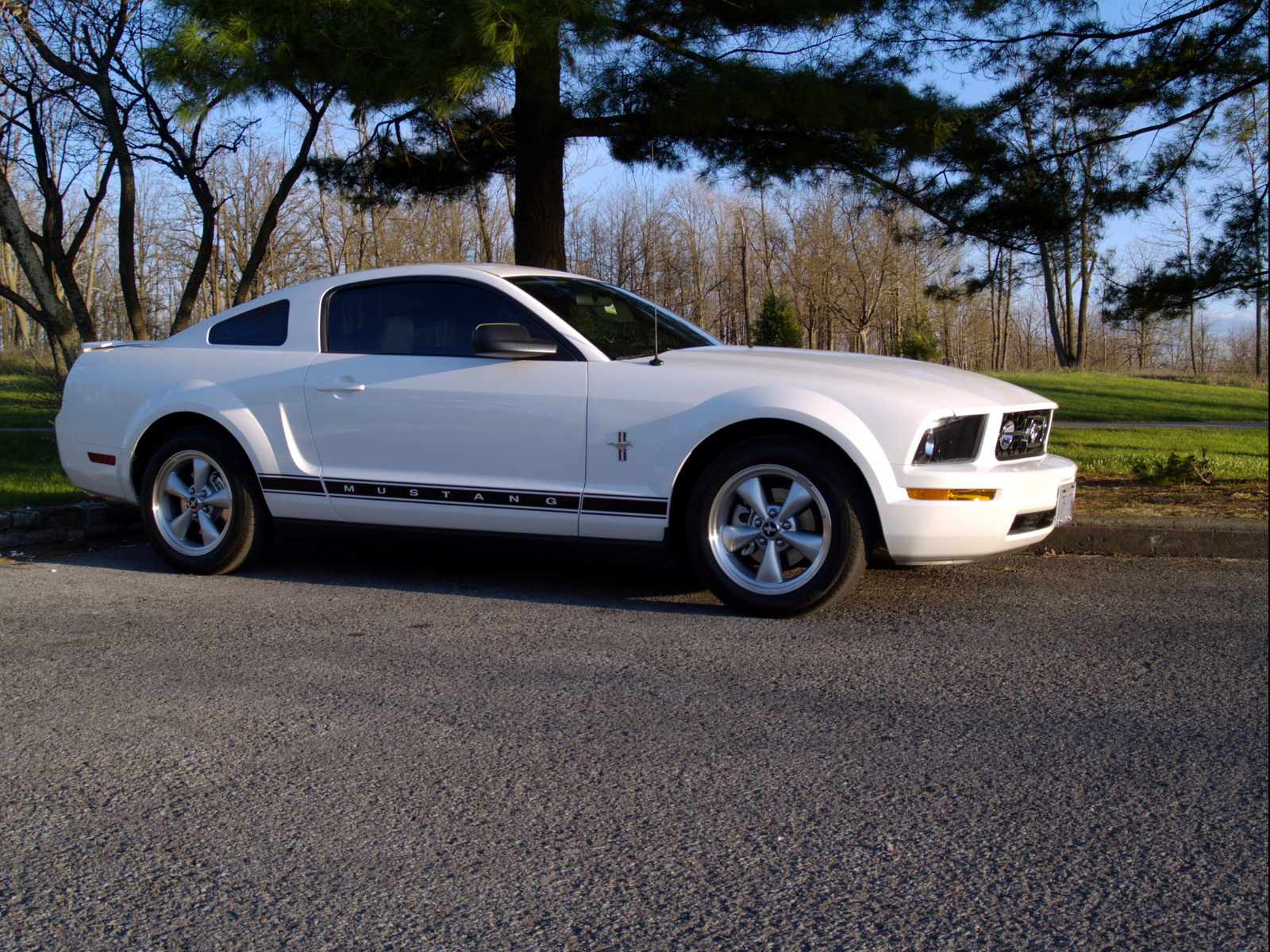Picture of 2007 Ford Mustang V6 Premium