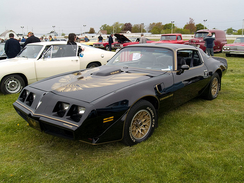 Related pictures 1979 pontiac trans am 10th anniversary pictures