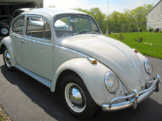 1966 Volkswagen Beetle For Sale. 1965 Volkswagen Beetle picture