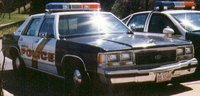 Picture of 1991 Ford LTD Crown Victoria 4 Dr S Sedan, exterior, gallery_worthy