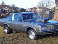 1979 Buick Skylark Overview