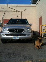 2002 Mercedes-Benz M-Class ML320, 2002 Mercedes-Benz ML320 4 Dr ML320 AWD SUV picture, exterior