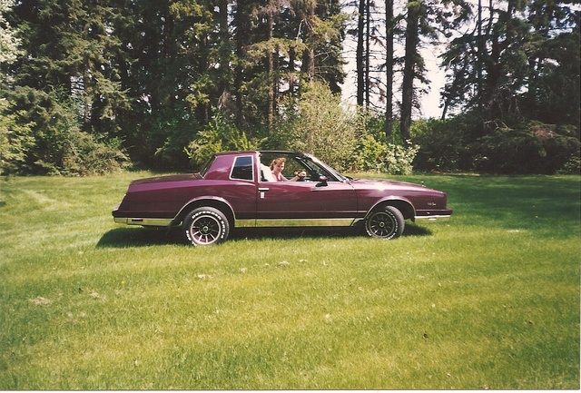 Picture of 1981 Chevrolet Monte Carlo, exterior