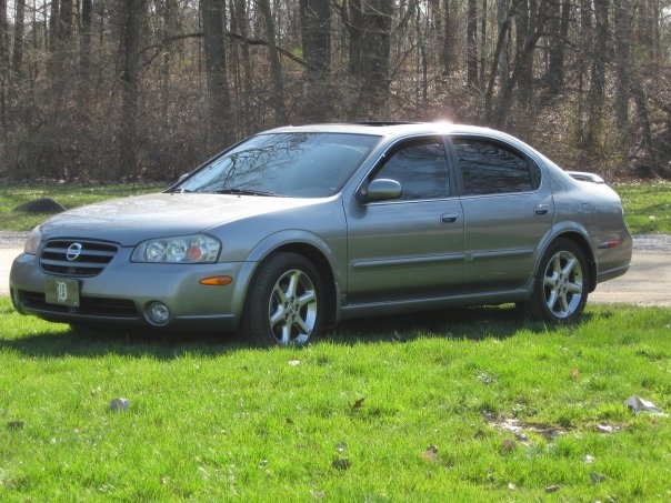 Picture of 2003 Nissan Maxima SE