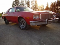 Picture of 1976 Ford Torino, exterior