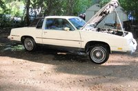 Picture of 1984 Oldsmobile Cutlass Supreme, exterior, engine, gallery_worthy