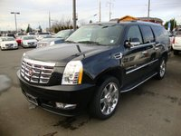 Picture of 2010 Cadillac Escalade ESV Platinum 4WD, gallery_worthy