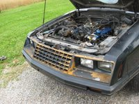 1982 Ford Mustang GT, two tone black and rust, engine