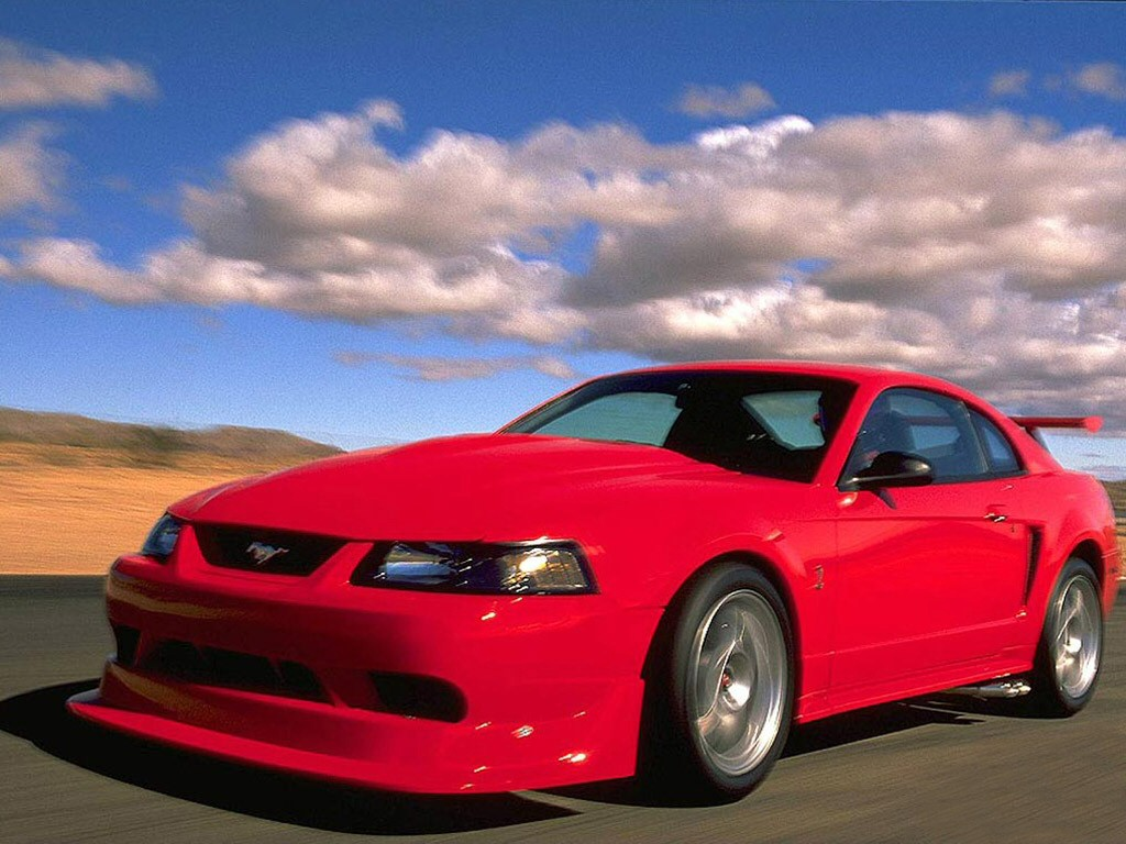 2001 Ford Mustang SVT Cobra picture
