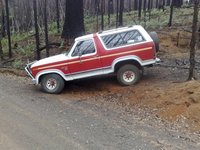 Picture of 1985 Ford Bronco, exterior