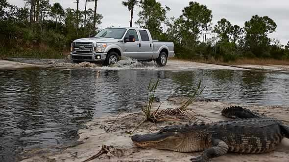 2010 Ford F-350 Super Duty XLT SuperCab LB, great pic of a 2011 F-350 on a swampy trail, exterior, gallery_worthy
