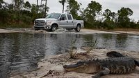 2010 Ford F-350 Super Duty XLT SuperCab LB, great pic of a 2011 F-350 on a swampy trail, exterior