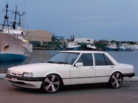 1986 Ford Falcon Overview