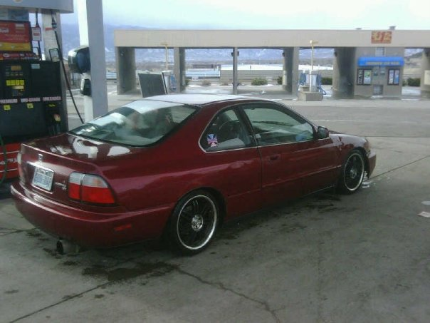 1995 Honda Accord EX Coupe, 1995 Honda Accord 2 Dr EX Coupe picture