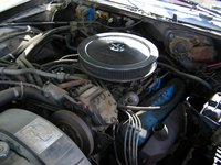 Picture of 1976 Chrysler Newport, engine, gallery_worthy