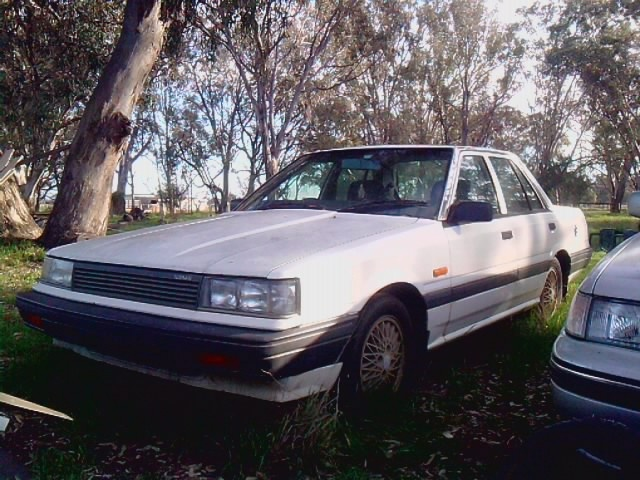 Picture of 1987 Nissan Pintara