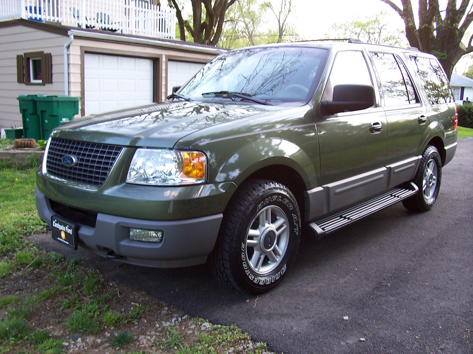 2003 Ford Expedition XLT 4WD picture, exterior