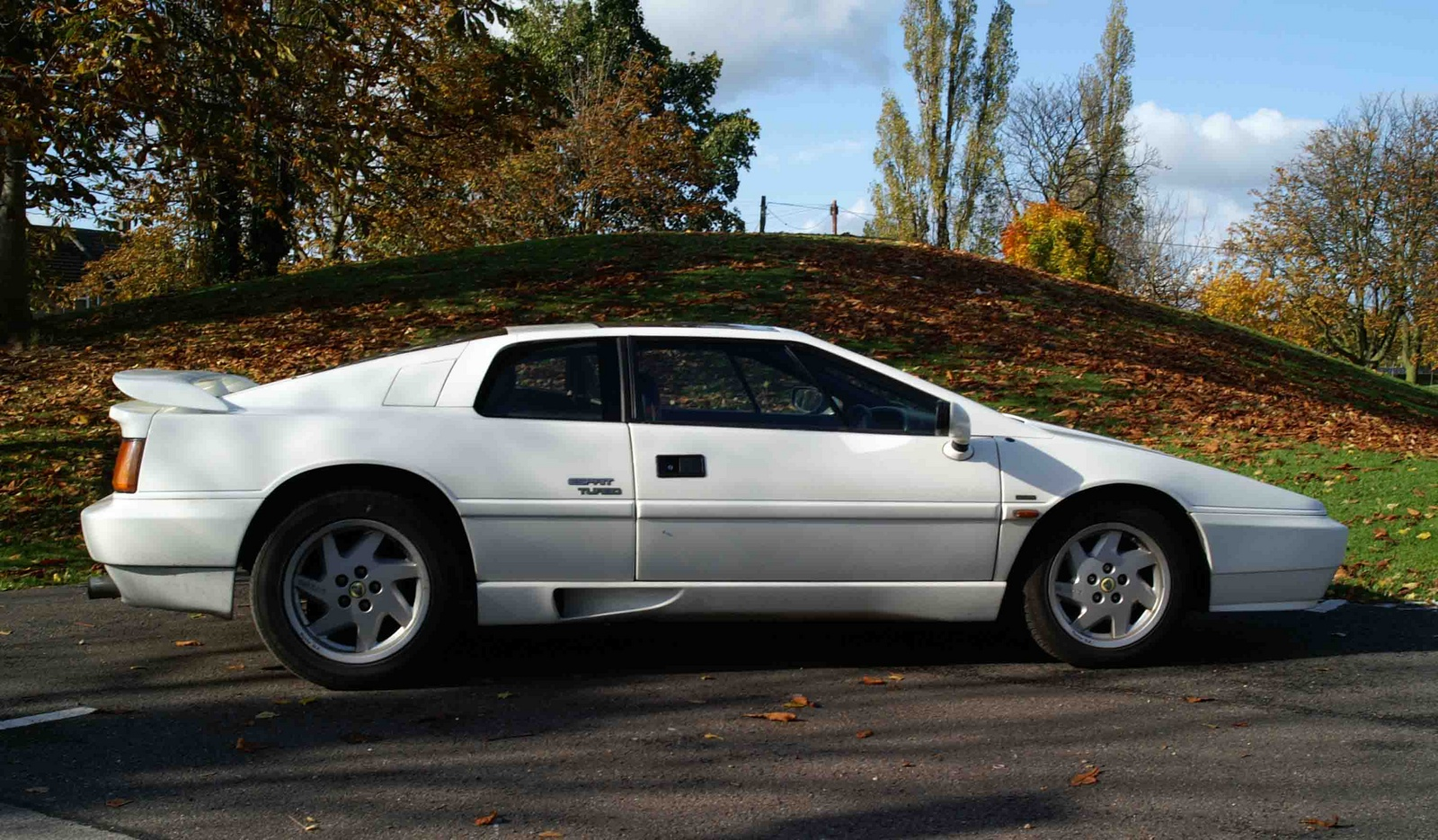 1990 Lotus Esprit picture