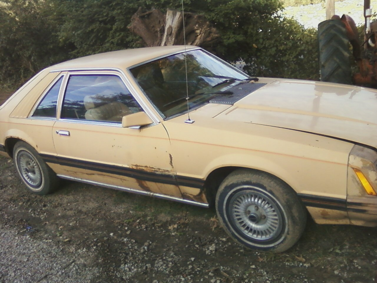 1979 ford mustang ghia coupe