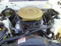 Picture of 1980 Ford Fairlane, engine, gallery_worthy