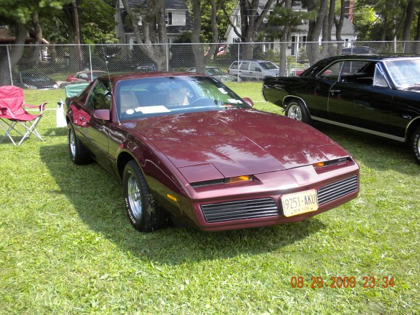 1982 Pontiac Firebird Se Related Infomation Specifications