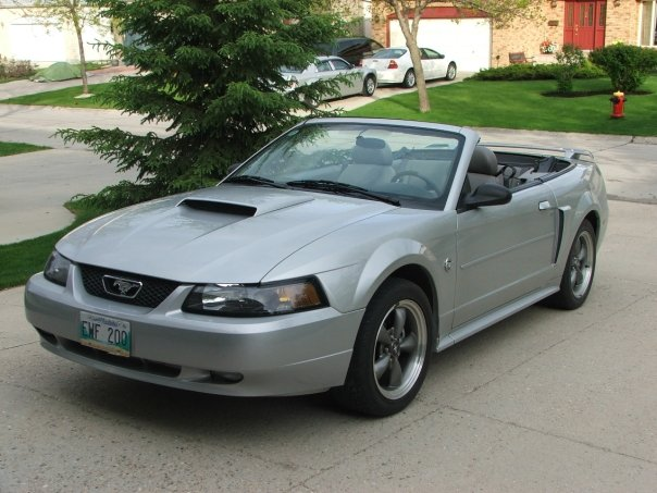 2004 ford mustang gt related infomation specifications. Black Bedroom Furniture Sets. Home Design Ideas