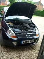 Picture of 2005 Ford Ka, exterior, engine