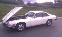 Picture of 1988 Jaguar XJ-S, exterior, engine, gallery_worthy