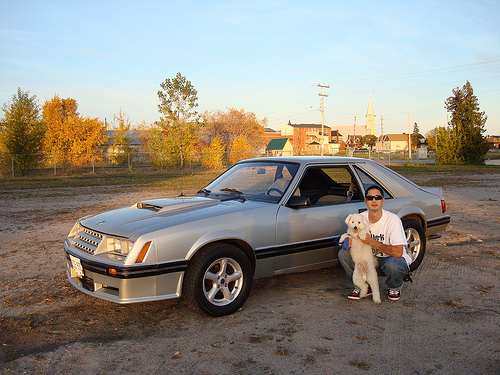 1982 Ford Mustang GT picture, exterior