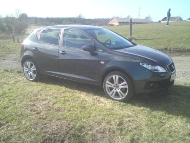 Picture of 2009 Seat Ibiza, exterior, gallery_worthy