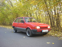 1987 Ford Fiesta Picture Gallery