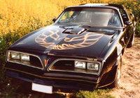 1978 Pontiac Firebird picture, exterior