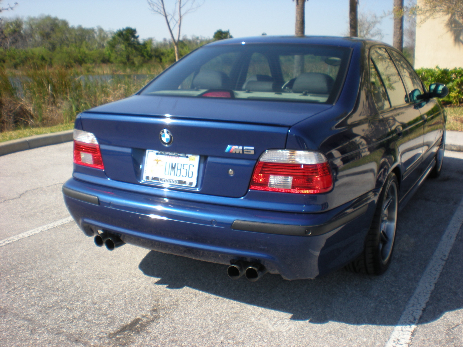 2003 Bmw M5 Pictures Cargurus