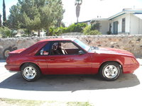 Picture of 1984 Ford Mustang GT350, exterior, gallery_worthy