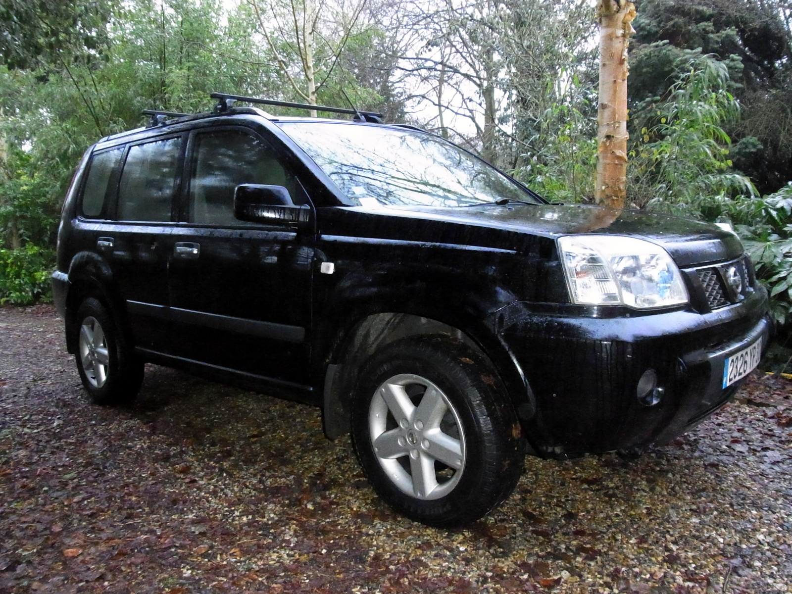 2004 nissan x trail pictures cargurus. Black Bedroom Furniture Sets. Home Design Ideas